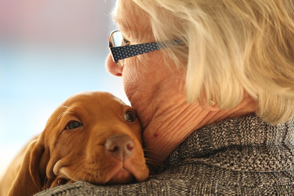 Elderly people and their companion animals