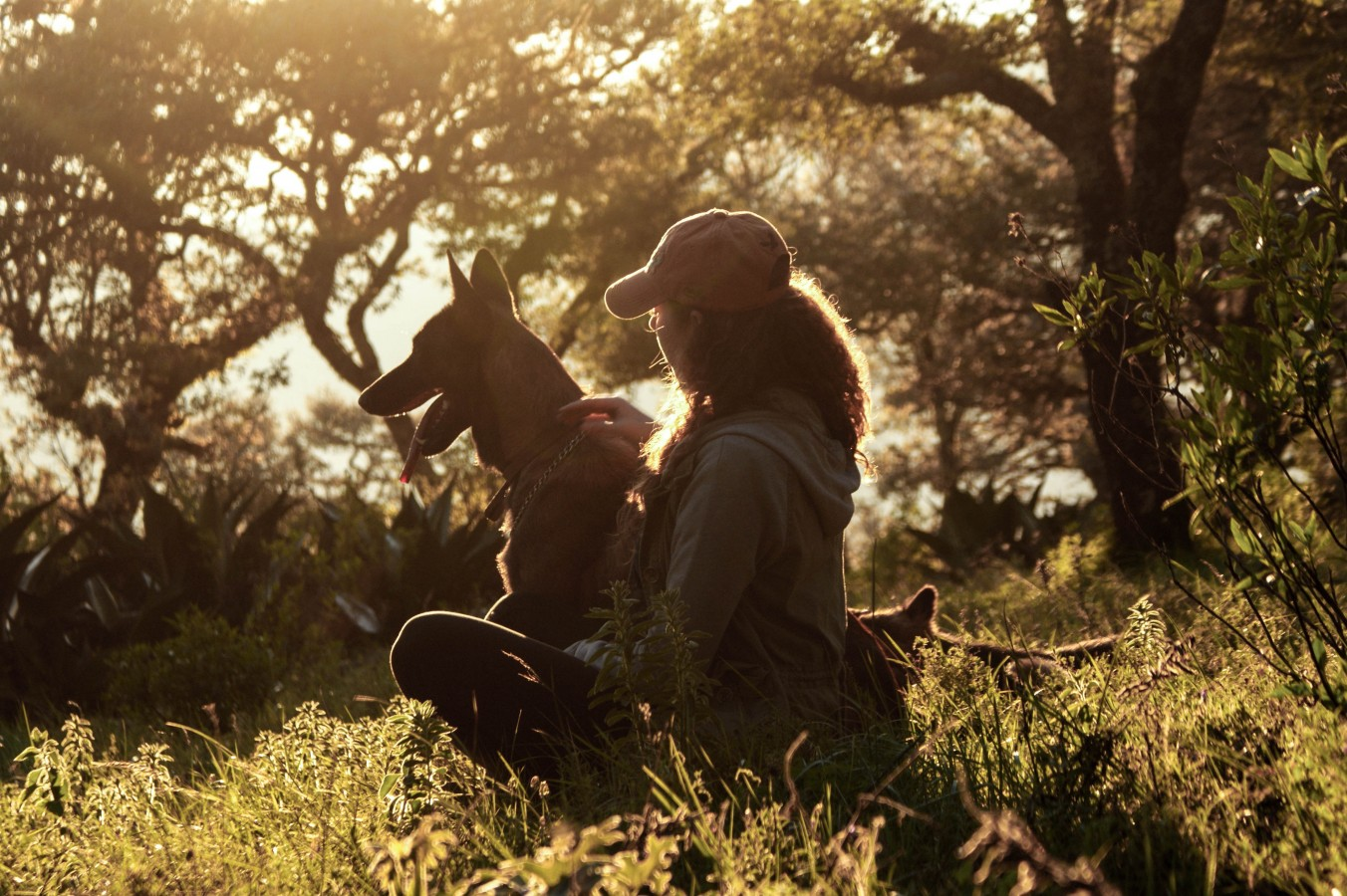 Sharing our lives with companion animals
